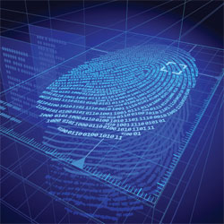 Biometrics is the only solution for authenticating