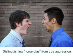 Distinguishing horse play from true aggression