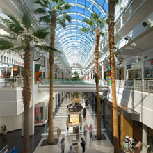 Arden Fair mall interior