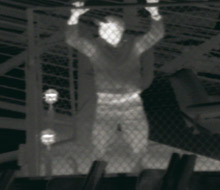 Flir thermal imaging cameras are valuable instruments for night vision applications
