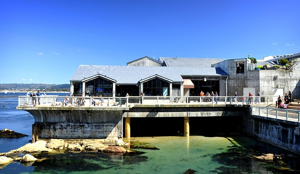 Arecont Vision video surveillance deployed by Monterey Bay Aquarium, California