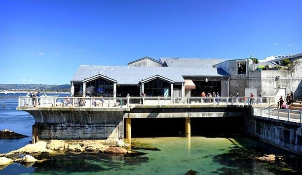 AV Costar Video Surveillance Deployed By Monterey Bay Aquarium, California