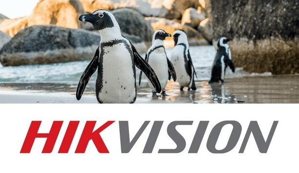 Hikvision deploys cameras as part of partnership with DICT to protect African penguins