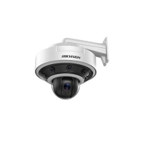 Hikvision DS-2DP1636Z-D IP surveillance camera