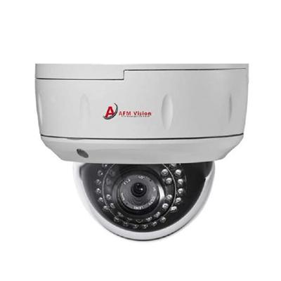 AFMVision AFM-2SHIP-2MP-D 2 megapixel IR dome IP camera