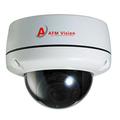 AFMVision AFM-VDA101SM2Ti 2 megapixel IR vandal proof dome IP camera