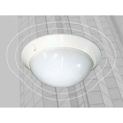 Aleph APX-101 Intruder detector