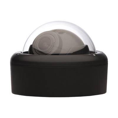Arecont Vision AV2146DN-04-D MegaBall All-In-One IP camera