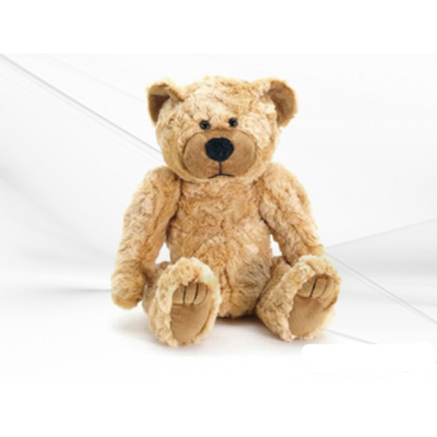 Bolide BL2011C wireless teddy bear hidden colour camera