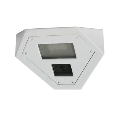 Bosch EX36MNX902W-P day/night CCTV camera with 540 TVL resolution