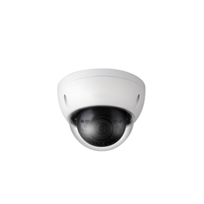 Eagle Eye Networks CD01 1 Mega Pixel outdoor Wi-Fi camera