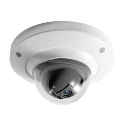Dahua Technology DH-IPC-HDB4100CP 1.3MP network dome camera