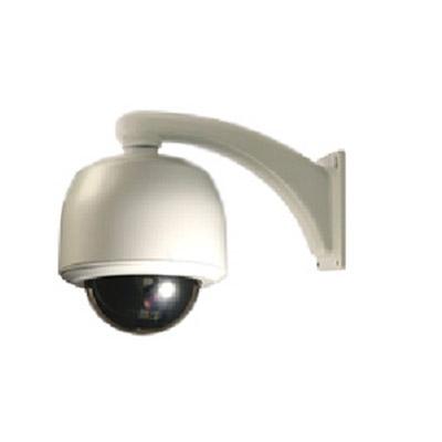 DVTel DVT - 9840D - high-resolution network camera
