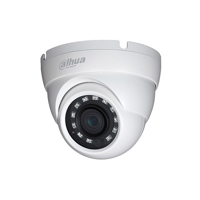 Dahua Technology HAC-HDW1220M 2MP Value Starlight HDCVI IR Eyeball Camera