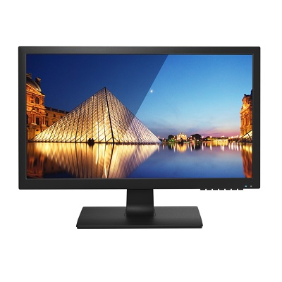 Perfect Display Technology Pro-P220WE 21.5 inch BNC CCTV monitor