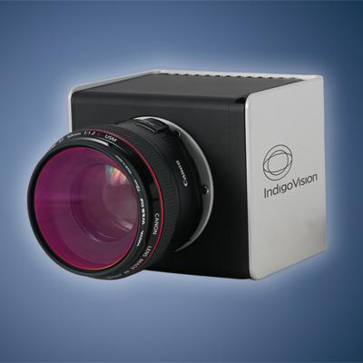 IndigoVision 511601 20MP indoor IP camera