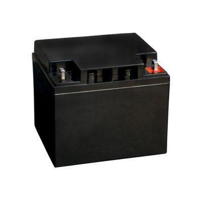 Bosch IPS-BAT12V-45AH lead battery for intrusion alarm systems