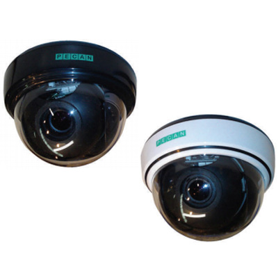 Pecan D133-W colour/monochrome dual-voltage internal dome camera