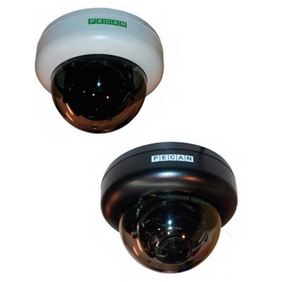 Pecan D138-W colour/monochrome dual-voltage internal dome camera