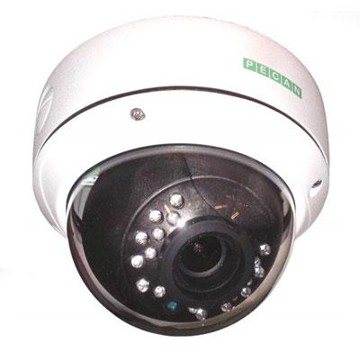 Pecan VRD146 1/3 inch CCD 600 TVL dome camera