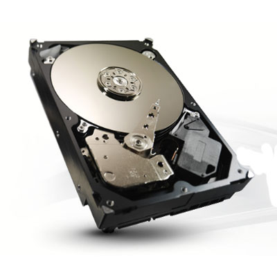 Seagate ST3250312CS 250GB Hard Drive Video Storage Solution