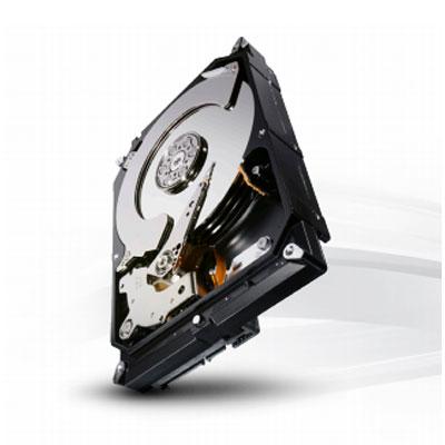 Seagate ST4000NC001 4TB Terascale HDD hard drive