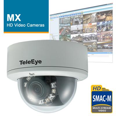 TeleEye turnkey HD surveillance system