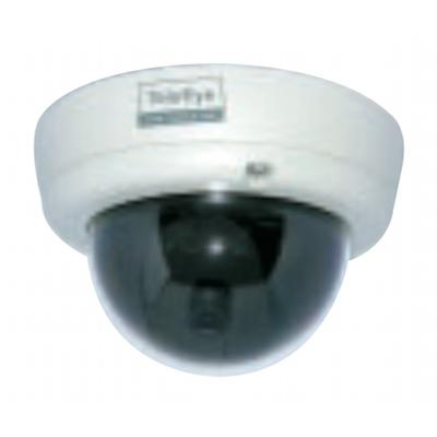 TeleEye NX173 vandal resistant network dome