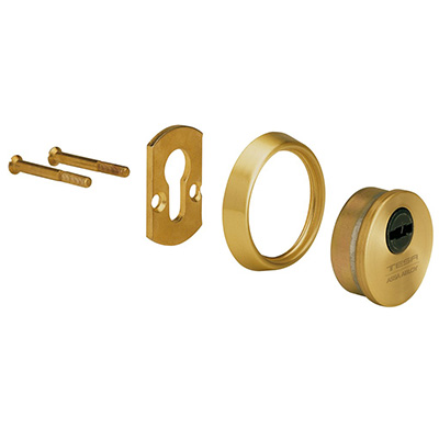 TESA E700L security escutcheon