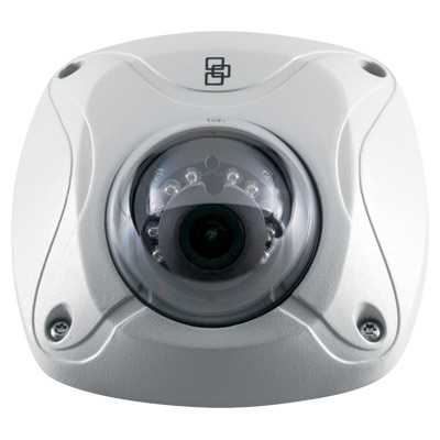 TruVision TVW-3102 outdoor IR IP wedge dome camera