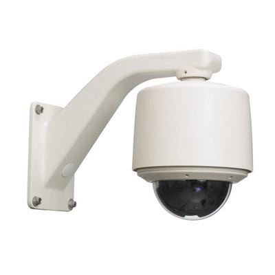 Vicon SVFT-M36 1/4 inch day/night outdoor dome camera