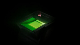 Suprema Live Scan fingerprinting